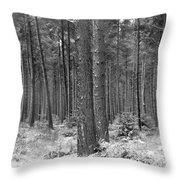 Woods In Winter, Slaley Throw Pillow