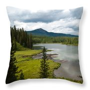 Wood's Lake Summer Landscape Throw Pillow