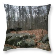 Woods Of Big Round Top Throw Pillow