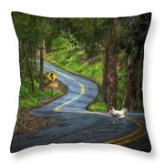 Woods Road 1 - Summer Throw Pillow