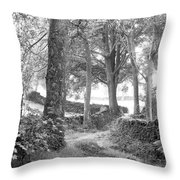 Woods, Troutbeck, Windermere Throw Pillow
