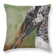 Woodstork Eye Throw Pillow
