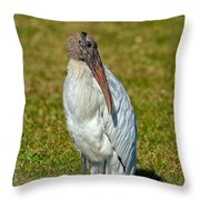 Woodstork On The Lookout Throw Pillow