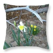 Woodsy Narcissus Throw Pillow