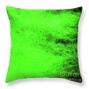 Wool Green Throw Pillow