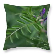 Woolly Vetch In Spring Throw Pillow