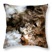 Woolshed Wool Throw Pillow