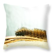 Wooly Worm Throw Pillow