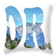 Word Art...  Colorado Throw Pillow