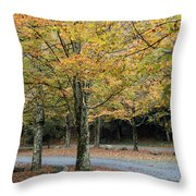 Words End State Park Drive Throw Pillow