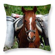 Work Horse At The Azores Throw Pillow