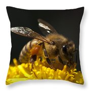 Working The Flower Throw Pillow