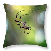 Working The Web Throw Pillow