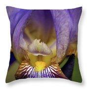 World Inside Of Iris Throw Pillow