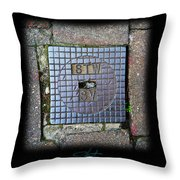 World View Throw Pillow