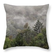Worlds End State Park Fog Throw Pillow