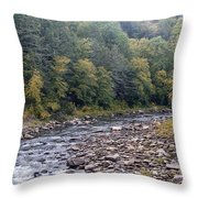 Worlds End State Park Loyalsock Creek Throw Pillow