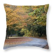 Worlds Ends State Park Road Throw Pillow