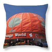 World's Largest Orange Throw Pillow