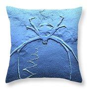 Worldwide Web Throw Pillow
