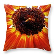 Worm And His Sunflower Throw Pillow