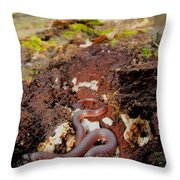 Worm Snake Throw Pillow