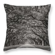 Wormsloe Plantation Throw Pillow
