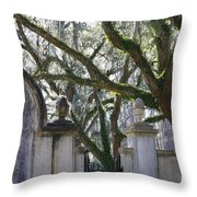 Wormsloe Welcome Throw Pillow