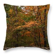 Worth The Fall Throw Pillow