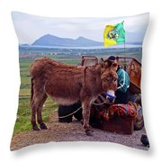 Would You Like A Ride In Ireland Throw Pillow