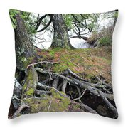 Woven Roots Throw Pillow