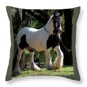 Wr The Big Son Of Bok #2 Throw Pillow