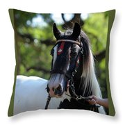 Wr The Big Son Of Bok Throw Pillow