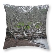 Wrack And Driftwood Throw Pillow