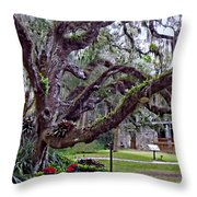 Wrap Me In Your Arms Throw Pillow