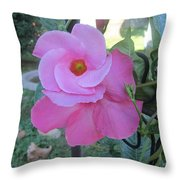 Wrapped In Circles Of Pink Throw Pillow