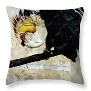 Wreathed Hornbill Perching Against Vintage Concrete Wall Backgro Throw Pillow