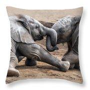 Wrestle-mania Throw Pillow