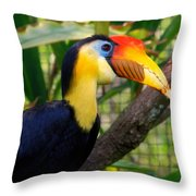 Wrinkled Hornbill Throw Pillow