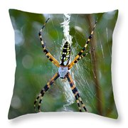 Writing Without Spellcheck Throw Pillow