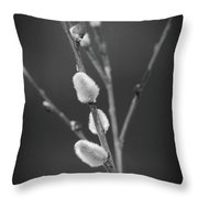 Wrong Time Of Year For These Things Throw Pillow