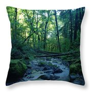 Wyeth Creek Throw Pillow