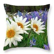 Wyethia And Camas Throw Pillow