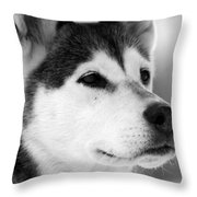 Wylow Throw Pillow