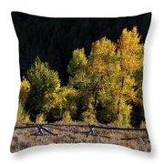Wyoming Autumn Color One Throw Pillow