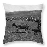 Wyoming: Cowboys, C1890 Throw Pillow