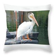 Wyoming Pelican Throw Pillow