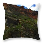 Wyoming Red Rocks Throw Pillow