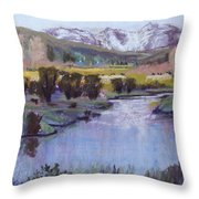 Wyoming River Throw Pillow