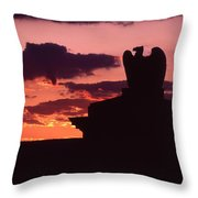 Wyoming Valley On My Mind... Throw Pillow
